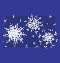 Fragment snowflakes vector
