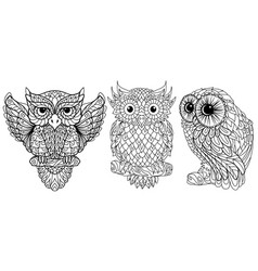 owl coloring vector image