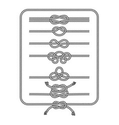rope knots silhouette line collection vector image