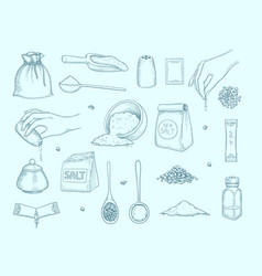salt collection ingredient for food hands vector image