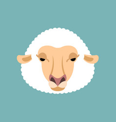 sheep face isolated ewe head vector image