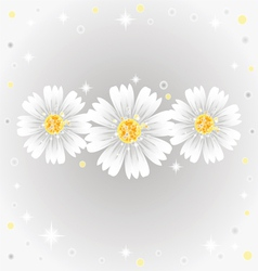 three daisy flowers on gray background vector image