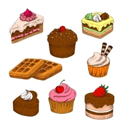 Colored sketches of cakes cupcakes and waffles vector