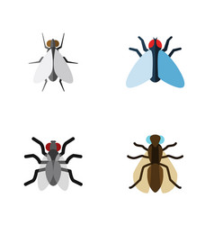 Flat icon housefly set mosquito housefly gnat vector