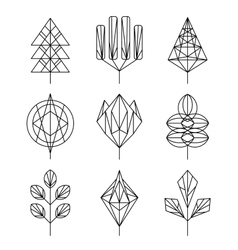 Graphical tree set hipster linear style vector image
