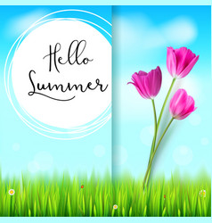 hello summer post card pink tulips on the blue vector image