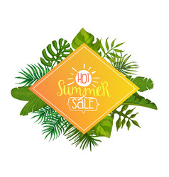hot summer sale banner with tropical palm leaves vector image