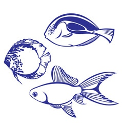 tropical fish set vector image
