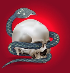 Human skull entwined by snake vector image