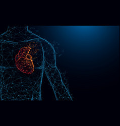human heart anatomy form lines and triangles vector image