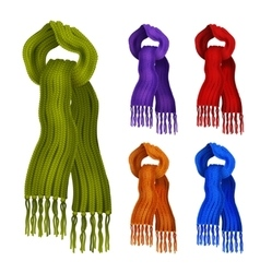 Knitted scarf color set vector image