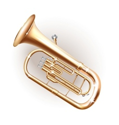 Classical Baritone horn Euphonium tuba vector image vector image
