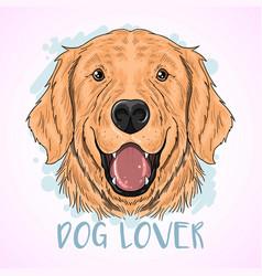 Dog cute golden vector