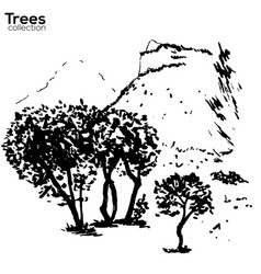 trees collection ink herault france landscape vector image