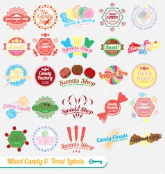 Mixed Candy Labels and Icons vector image