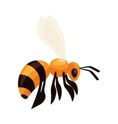 Flying honey bee isolated on white background vector image