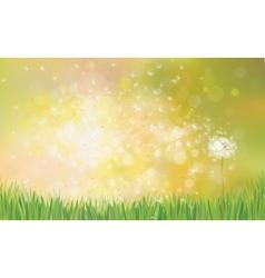 dandelion spring background vector image