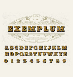 Beautiful set of capital letters vintage vector