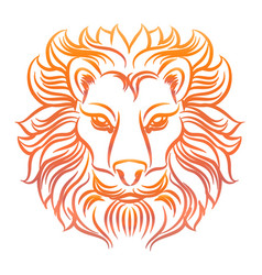 colorful sketch lion head vector image