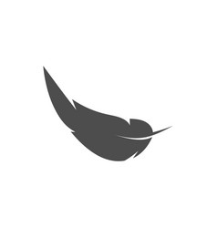 feather graphic design template isolated vector image