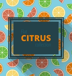Frame of citrus vector