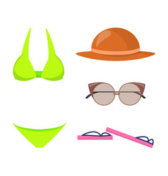 swimming suit and items set vector image