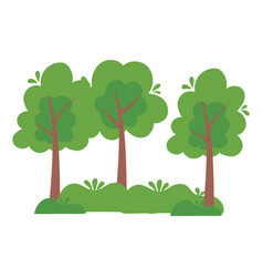 Trees forest botanical bushes nature isolated icon vector