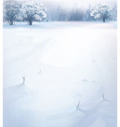 winter snow vector image vector image
