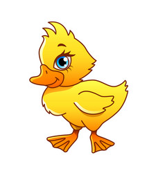 cartoon duck isolated vector image vector image