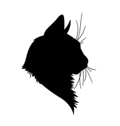 cat head silhouette in vector image