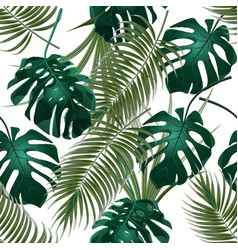 jungle thickets of tropical palm leaves and vector image