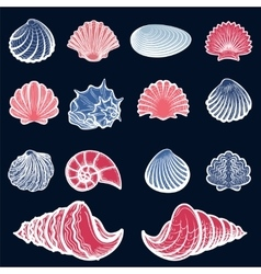 Colorful sea shell set vector image
