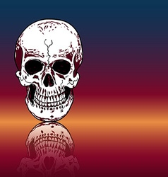 Drawing human skull with reflection on color vector image vector image