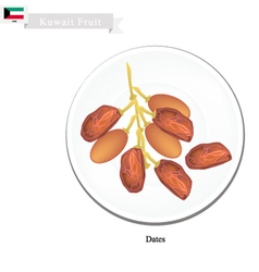 Dates Fruit A Popular Fruit in Kuwait vector image