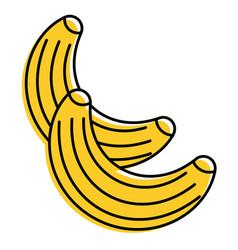 food fruit healthy bananas fresh vector image