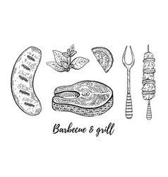 grill barbecue sketch set fish steak sausage vector image
