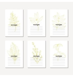 Recipe cards collection with hand drawn spicy vector image vector image
