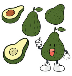 Set of avocado vector