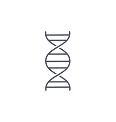 simple line drawing dna spiral molecule vector image