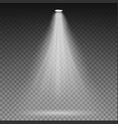 white beam lights spotlights transparent vector image vector image