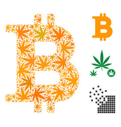 Bitcoin mosaic of cannabis vector