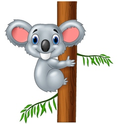 Happy koala in tree vector