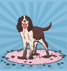 Pop art springer spaniel cute dirty dog vector