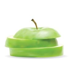 Realistic apple vector image