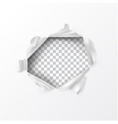 realistic torn hole in paper vector image