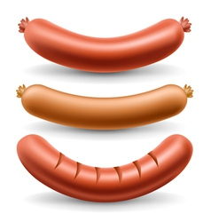 Sausage set vector image