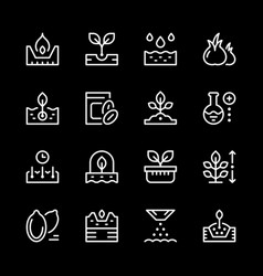 Set line icons seed and seedling vector