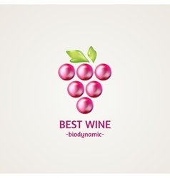 Colored glossy and shiny winery sphere icon vector image