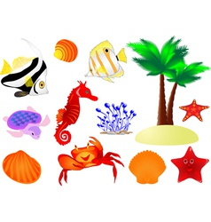 summer collection vector image vector image