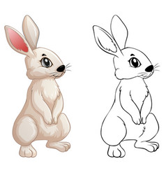 animal doodle for little bunny vector image vector image